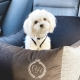 Pelíšek do auta pro psy PARIS GREY