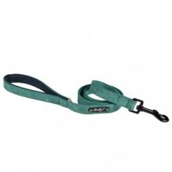 Vodítko pro psy DOGGY SWEET zelené 20mm x 105cm